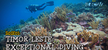 Video: Episode 1 of Timor Leste From Below Photo