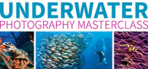 Underwater Photography Masterclass available in the U.S.A. Photo