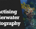 Wetpixel Live: Practicing Underwater Photography Photo