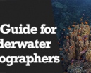 Wetpixel Live: ISO Guide for Underwater Photographers Photo