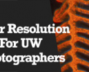 Wetpixel Live: Super Resolution for Underwater Photographers Photo