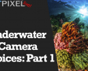 Wetpixel Live: Underwater Camera Choices Part One Photo
