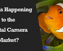 Wetpixel Live: What is Happening to the Digital Camera Market? Photo
