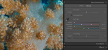 Tutorial: Removing Chromatic Aberration in Lightroom Photo