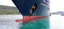 Cruise Ship owners fined for reef damage Photo