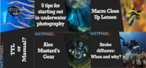 Wetpixel Live: 5 Most Watched Episodes of 2020 Photo